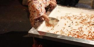 金魚すくいをする女の子